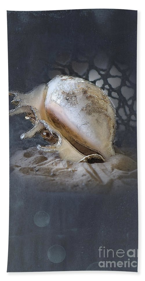 Sea Shell Beach Towel featuring the photograph Lace Murex Sea Shell In Blue 2 by Betty LaRue