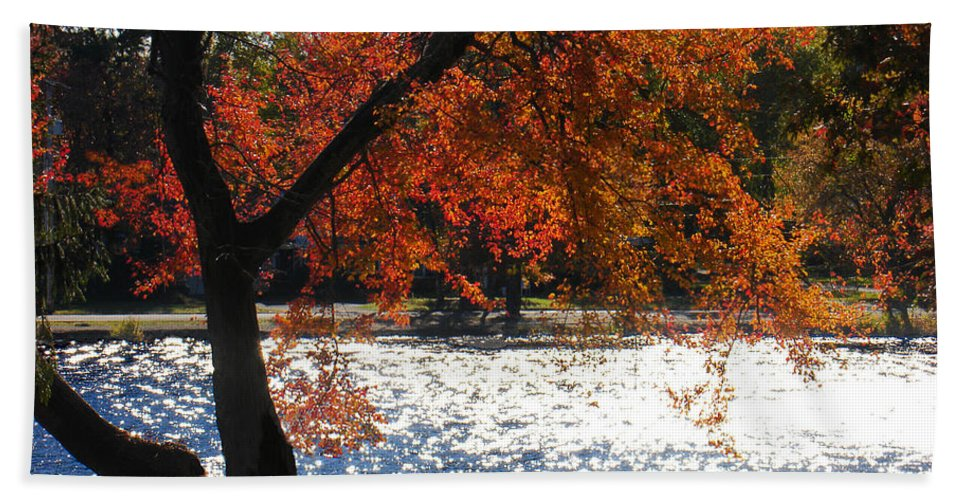 Landscape Beach Towel featuring the photograph Lakewood by Steve Karol