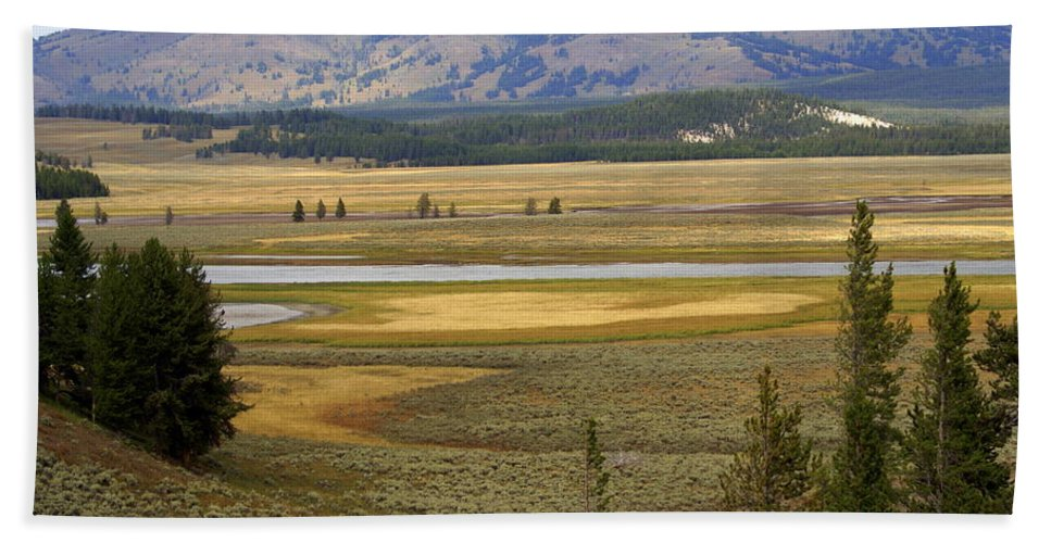 Yellowstone National Park Beach Towel featuring the photograph Lamar Valley 1 by Marty Koch