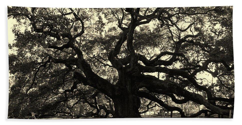 Fine Arts Beach Towel featuring the photograph Last Angel Oak 72 by Susanne Van Hulst