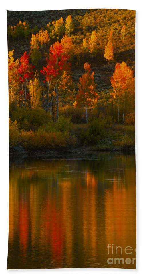 Grand Teton Beach Towel featuring the photograph Last Light At Oxbow Bend by Sandra Bronstein