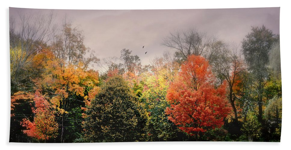 Nature Beach Towel featuring the photograph Late October by Diana Angstadt