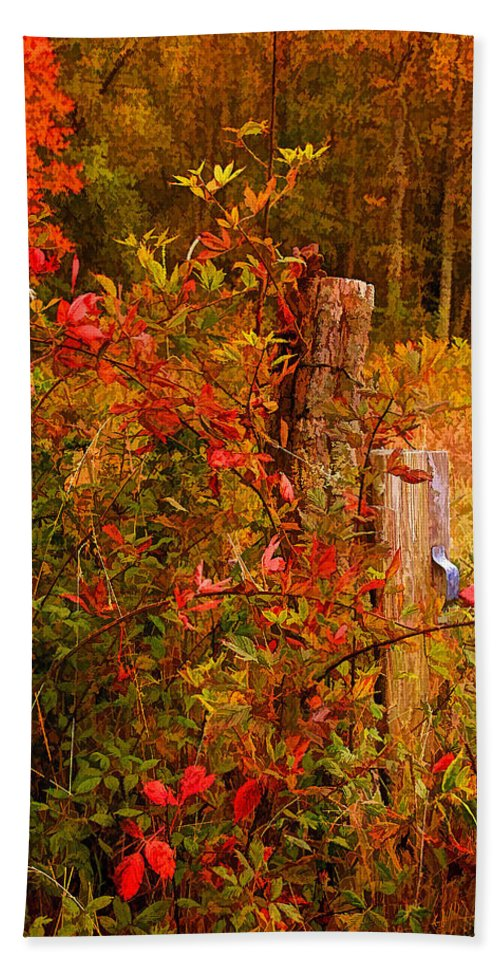 Appalachia Beach Towel featuring the photograph Lean On Me 2 by HH Photography of Florida