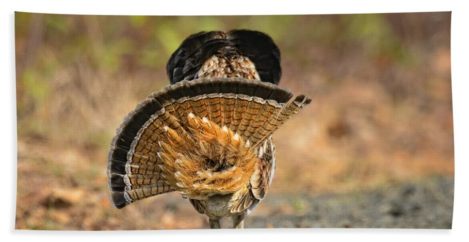 Timothy Flanigan Beach Towel featuring the photograph Leaving The Scene Grouse by Timothy Flanigan