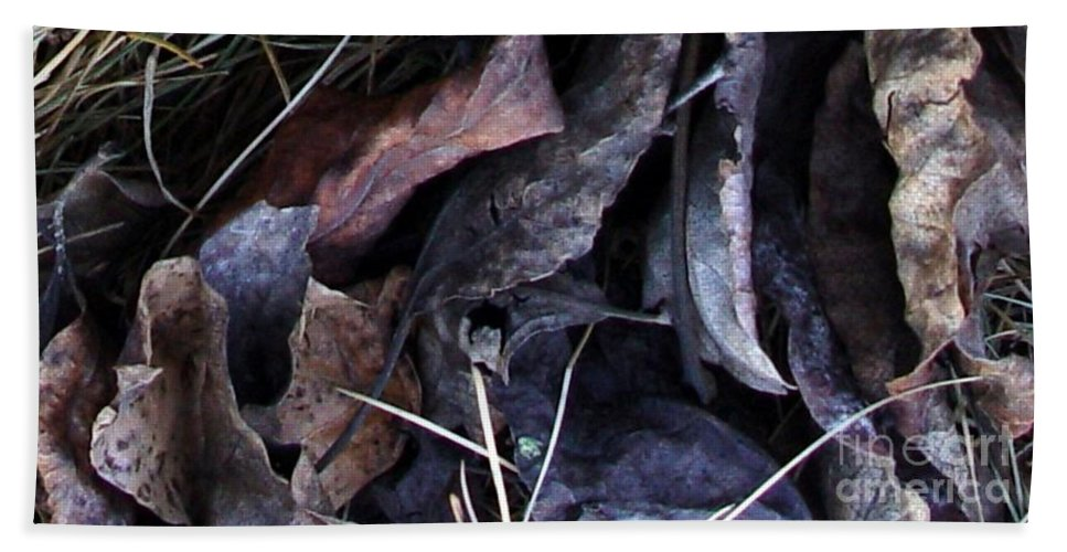 Leaves Beach Sheet featuring the photograph Leavings by Ron Bissett