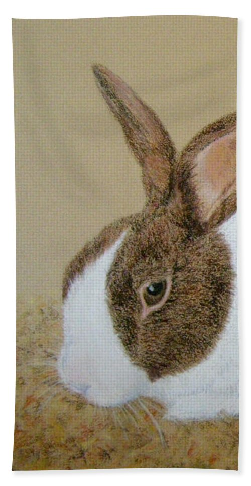 Bunny Beach Towel featuring the painting Les's Rabbit by Lynn Quinn