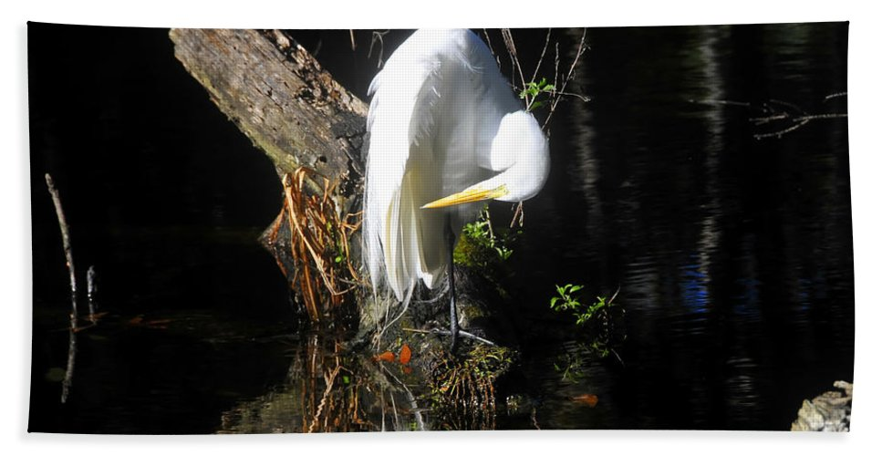 Great Egret Beach Towel featuring the photograph Life On The River by David Lee Thompson