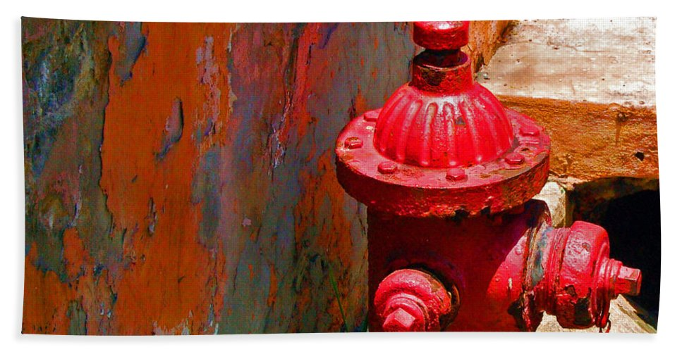 Red Beach Towel featuring the photograph Lil Red by Debbi Granruth