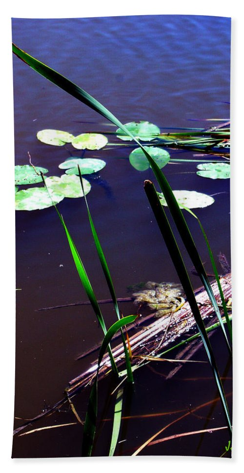 Reeds And Lily Pads Beach Towel featuring the photograph Lily Pads And Reeds by Joanne Smoley