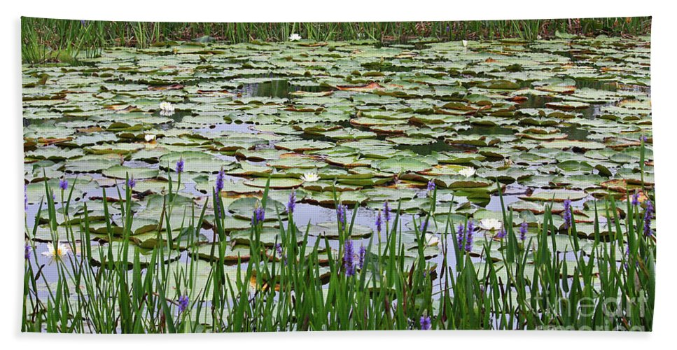 Lily Pond Beach Towel featuring the photograph Lily Pond Panorama by Carol Groenen