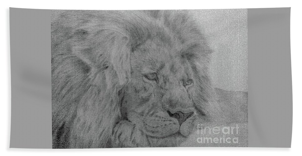 Lion Wild Cat Animals Pencil Paper Beach Towel featuring the drawing Lion by Nadi Sabirova
