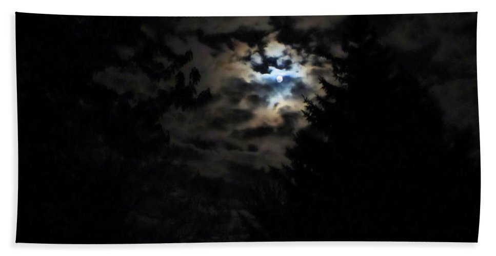 Lunar Beach Towel featuring the photograph Lisas Wildlife Moons by September Stone