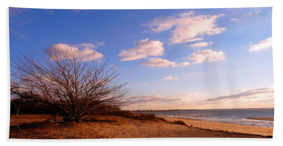 Landscape Beach Towel featuring the photograph Listen To The Quiet by Kendall Eutemey