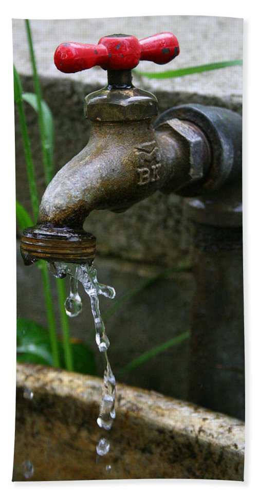 Water Faucet Valve Nature Garden Drop Dripping Red Wet Life Grow Nourish Rural Country Beach Towel featuring the photograph Living Water by Andrei Shliakhau