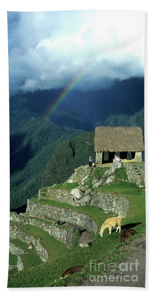 Machu Picchu Beach Towel featuring the photograph Llama And Rainbow At Machu Picchu by James Brunker