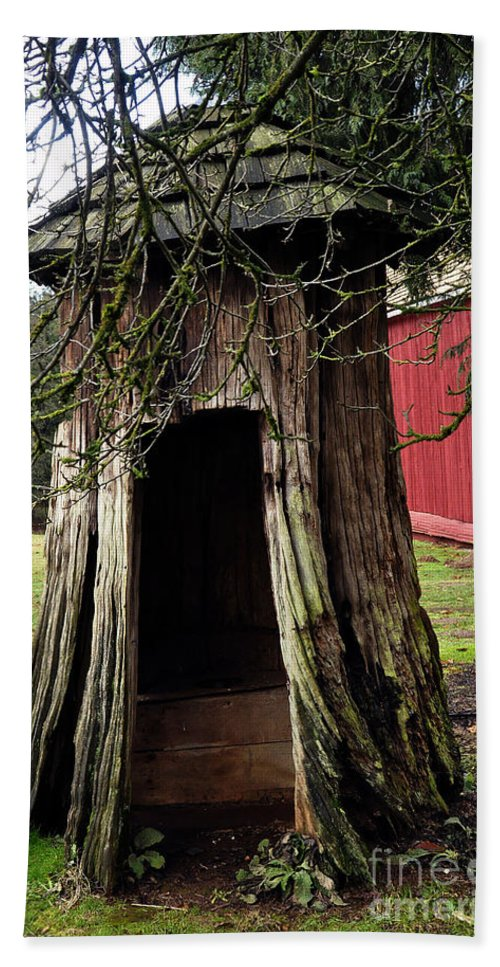 Clay Beach Towel featuring the photograph Loggers Outhouse by Clayton Bruster