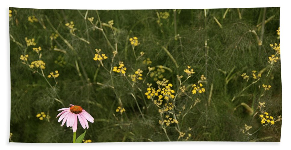 Flower Beach Towel featuring the photograph Lone Cone by David Arment