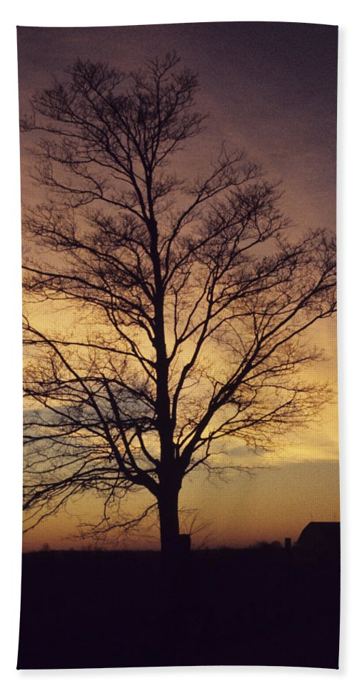 Lone Tree Beach Towel featuring the photograph Lone Tree At Sunrise by John Harmon