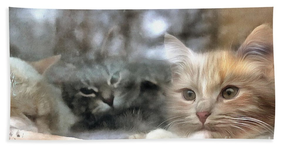 Lonely Kittens Behind The Glass City Beach Towel featuring the pyrography Lonely Kittens Behind The Glass by Yury Bashkin