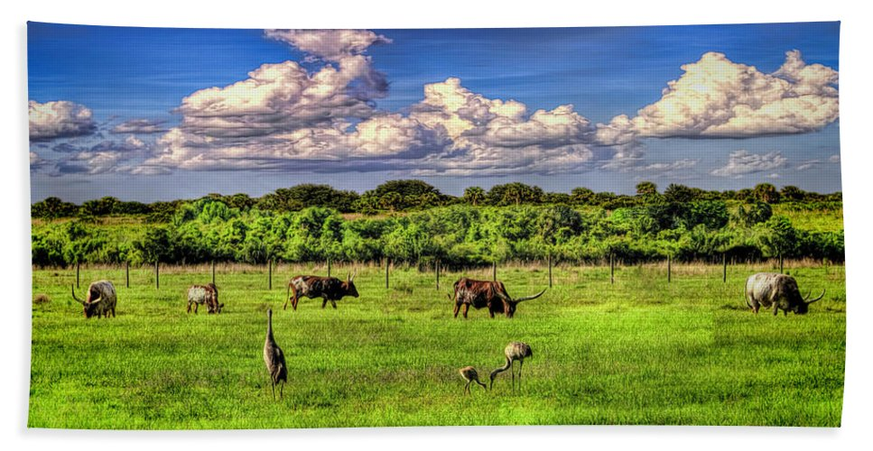 Florida Beach Towel featuring the mixed media Longhorns At The Ranch by Rogermike Wilson