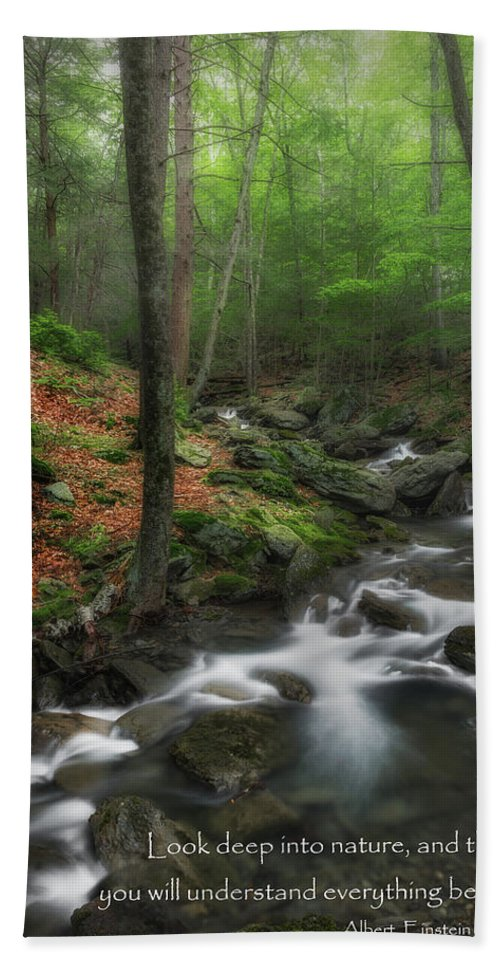 Massachusetts Beach Towel featuring the photograph Look Deep Into Nature by Bill Wakeley