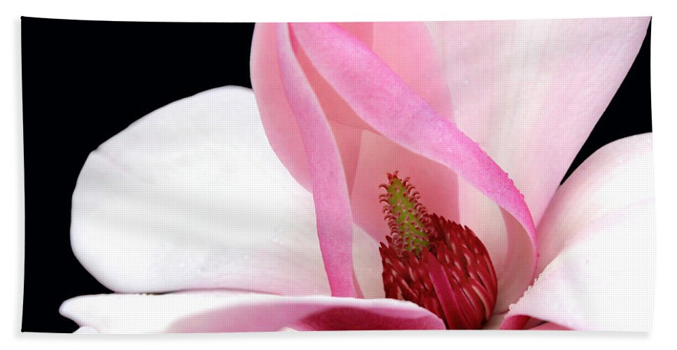 Floral Beach Towel featuring the photograph Look Inside by Debra Orlean