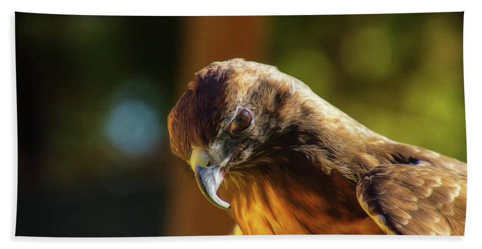 Falcon Beach Towel featuring the mixed media Looking Down On You by Terry Davis