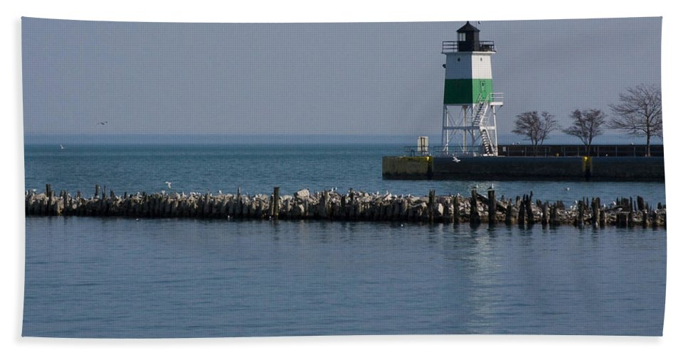 Chicago Lake Michigan Windy City Lighthouse Bird Gulls Water Blue Sky Beach Towel featuring the photograph Looking Far by Andrei Shliakhau