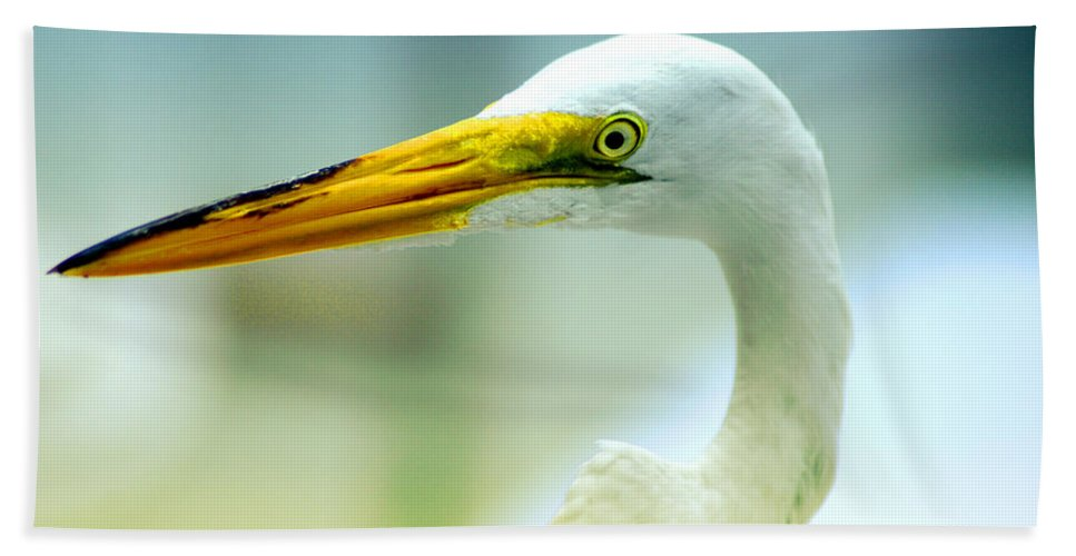 Photography Beach Towel featuring the photograph Looking For The Catch by Susanne Van Hulst
