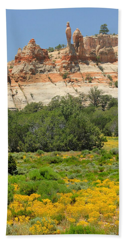 Flowers Beach Towel featuring the photograph D14492-los Gigantes by Ed Cooper Photography