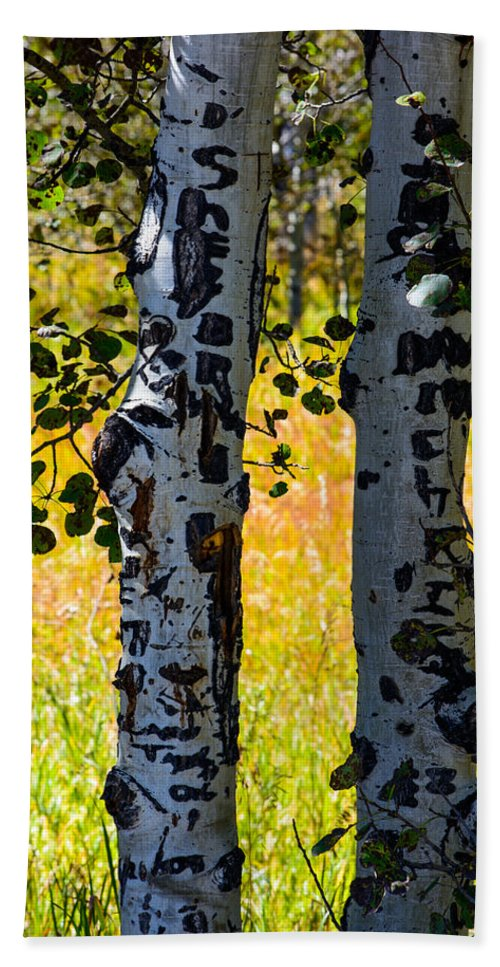 Trees Beach Towel featuring the photograph Love Trees by Tikvah's Hope