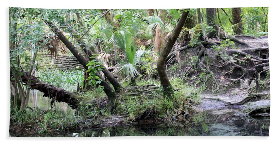 Landscape Beach Towel featuring the photograph Lovely Lithia Springs by Carol Groenen