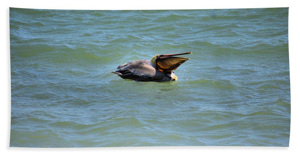 Pelican Beach Towel featuring the photograph Lunchtime Pelican by Deborah Weinhart