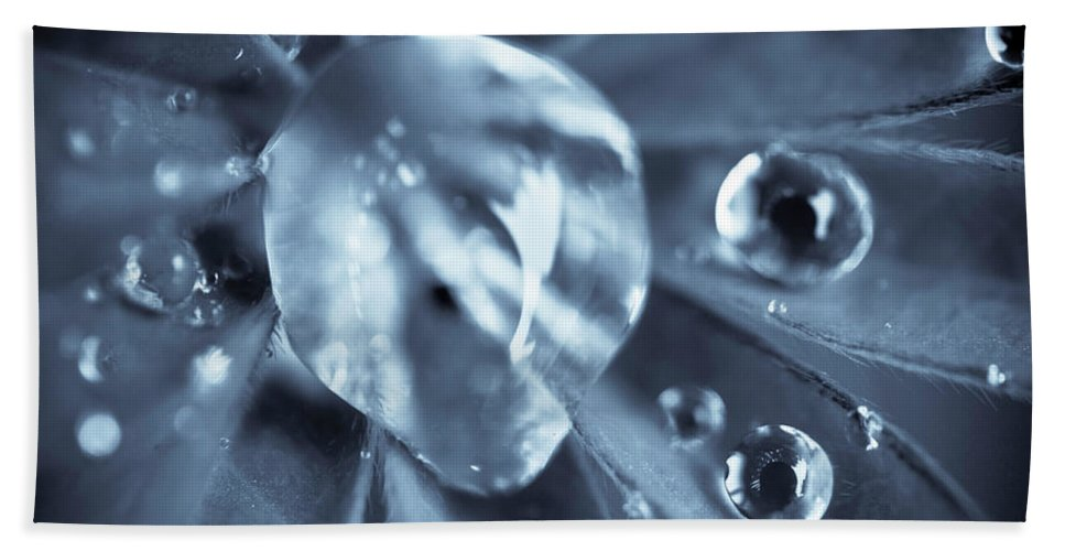 Dew Beach Towel featuring the photograph Macro - Water Drops by Danielle Silveira