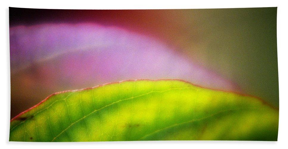 Macro Beach Towel featuring the photograph Macro Leaf by Lee Santa