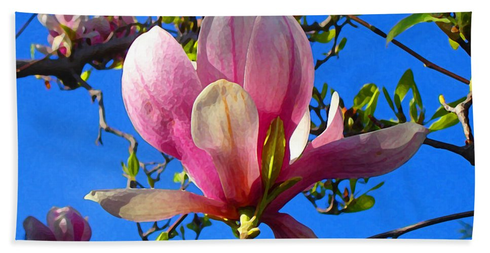Magnolia Beach Towel featuring the painting Magnolia Flower by Amy Vangsgard