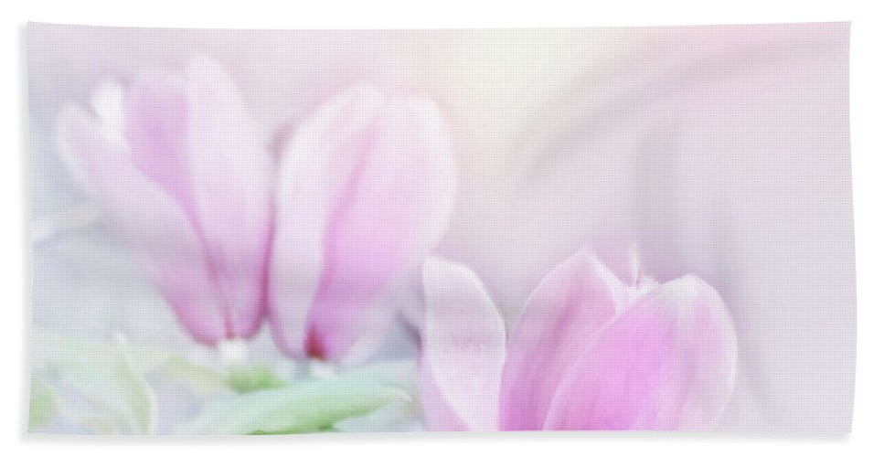 Flower Beach Towel featuring the digital art Magnolia Flowers Watercolor by Svetlana Foote