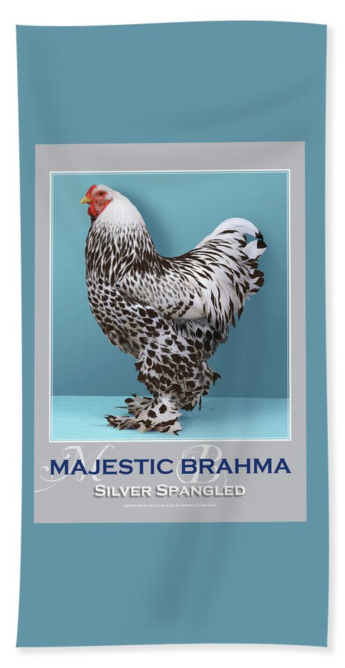 Poultry Beach Towel featuring the digital art Majestic Brahma Silver Spangled by Sigrid Van Dort