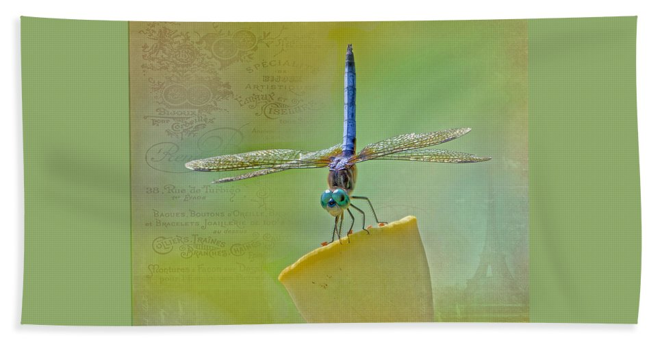 Dragonfly Beach Towel featuring the photograph Male Blue Dasher Dragonfly by TN Fairey