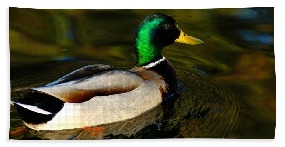 Clay Beach Sheet featuring the photograph Mallard Green by Clayton Bruster