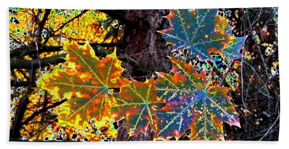 Cheerful Beach Towel featuring the digital art Maple Mania 14 by Will Borden