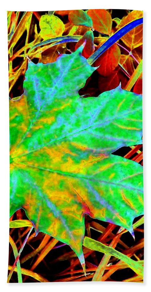 Maple Leaf Beach Towel featuring the photograph Maple Mania 21 by Will Borden