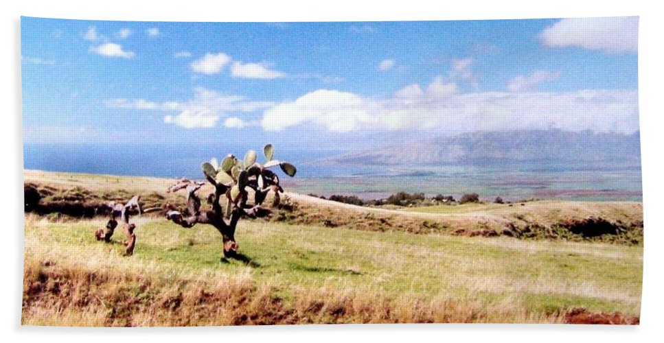 1986 Beach Towel featuring the photograph Maui Upcountry by Will Borden