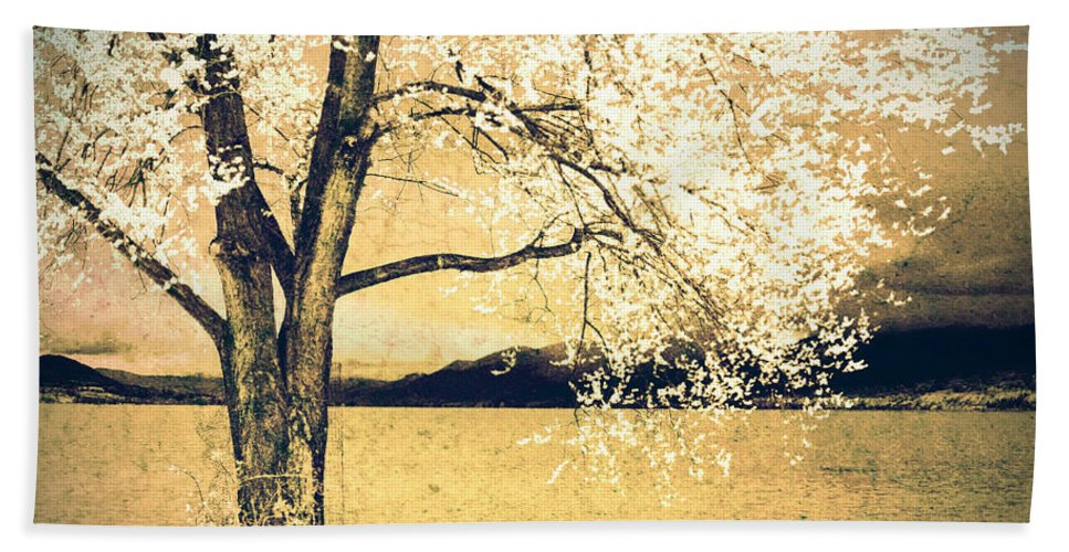 Tree Beach Towel featuring the photograph May 5 2010 by Tara Turner