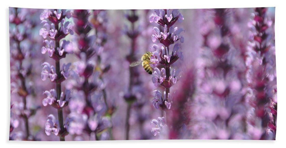 Flower Beach Towel featuring the photograph Meadow Sage by Rich Bodane