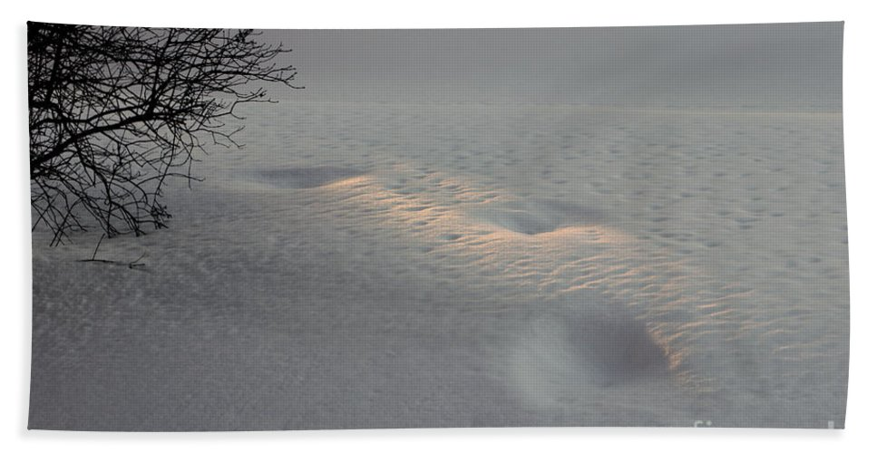 Snow Beach Towel featuring the photograph Means Of Survival by Linda Baird-White