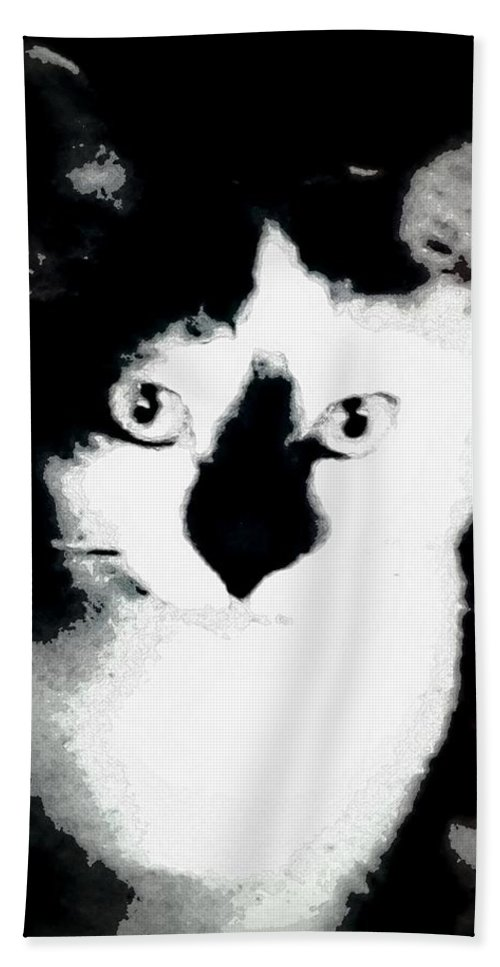Cat Beach Towel featuring the photograph Mischief by Antoinette Greenwalt Grude