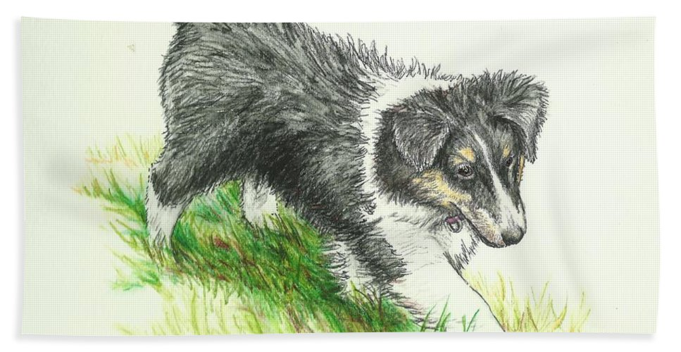 Sheltie Beach Towel featuring the drawing Miss Mary by Sue Bonnar