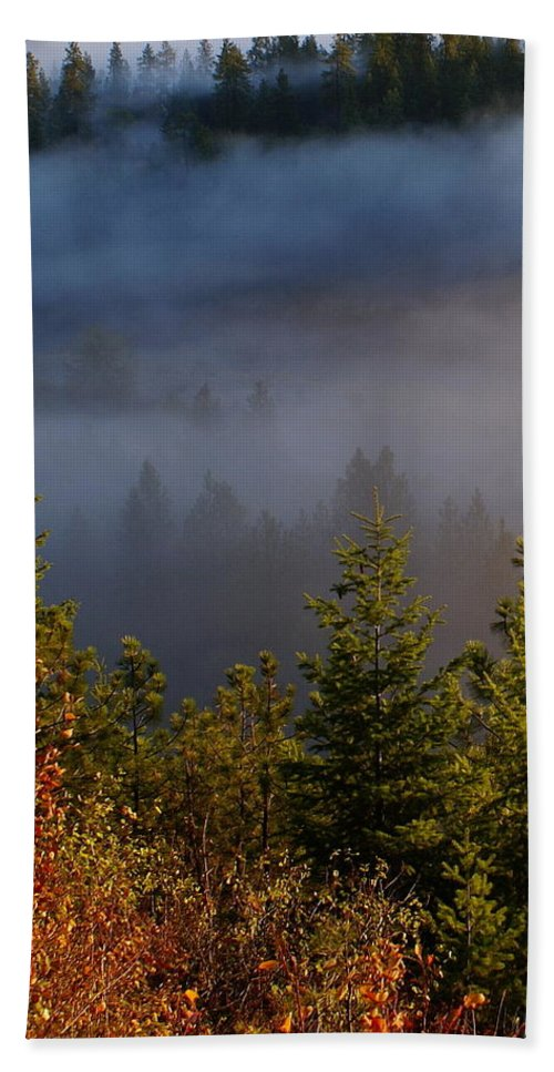 Nature Beach Towel featuring the photograph Mist Enshrouded Morning by Ben Upham III