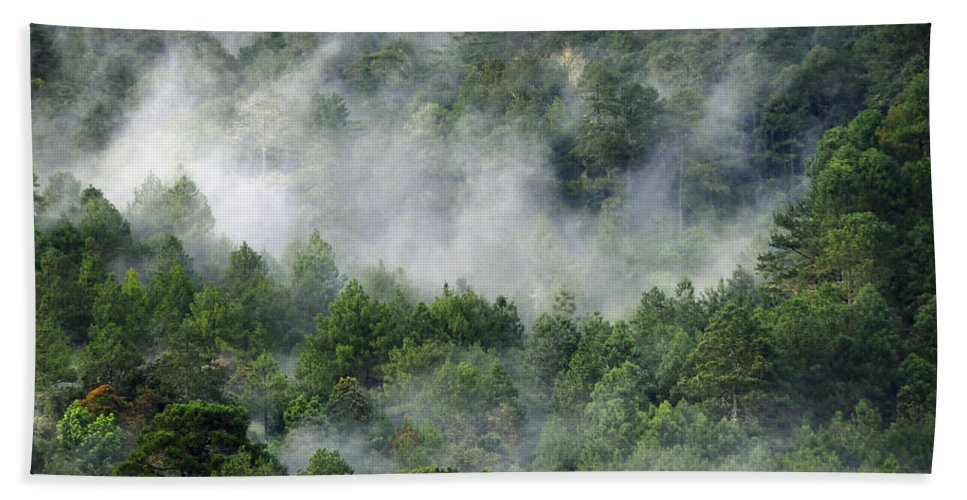 Skip Hunt Beach Towel featuring the photograph Mistico De San Jose De Pacifico by Skip Hunt